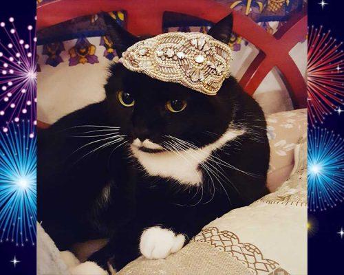 come vestirsi a capodanno - look per le feste - Isotta Catfluencer