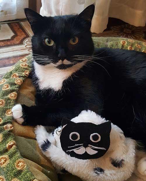 ciondolo borsa charms portachiavi gatto isotta catfluencer
