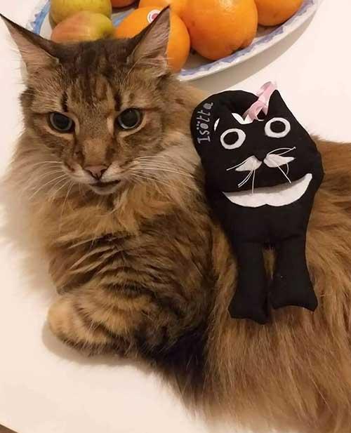 pupazzo gatto imbottito cotone - Isotta Catfluencer