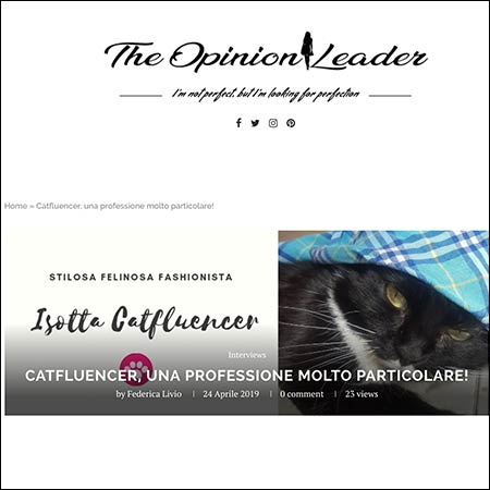intervista alla gatta fashion - isotta Catfluencer