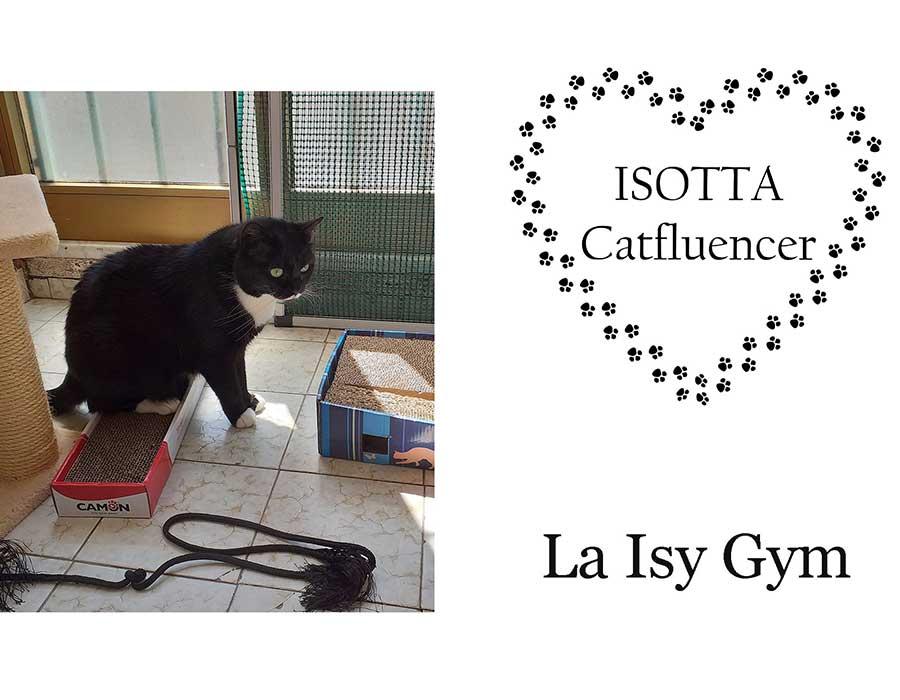 Isy Gym nuova ginnastica per arrivare in forma all'estate - meglio del pilates - Isotta Catfluencer