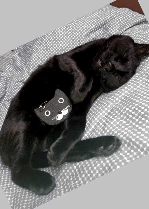 accessori a forma di gatto - ciondolo portachiavi per borsa
