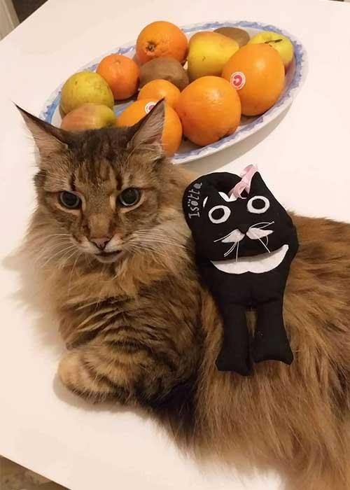 accessori a forma di gatto - pupazzo imbottito