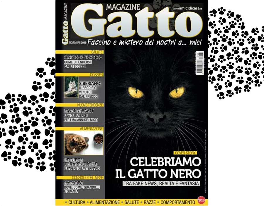 Gatto Magazine Isotta Catfluencer