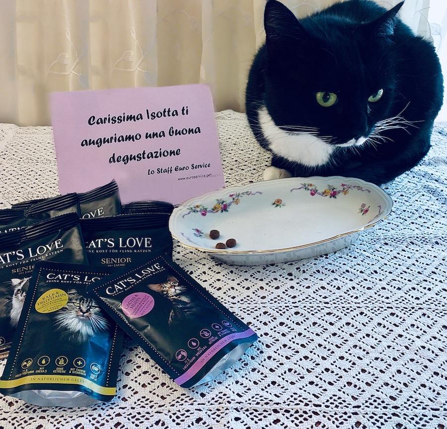 Migliori marche di cibo per gatti