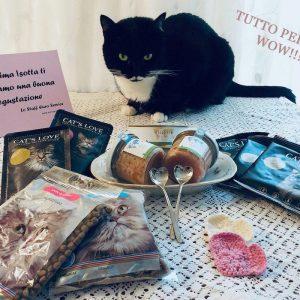 Alimentazione per gatti bio e cruelty free - Isotta Catfluencer